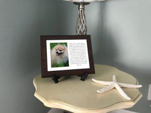 pet keepsake urns